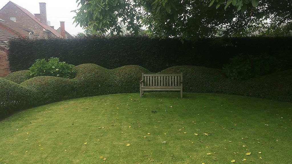 gras maaien en scheren hagen